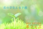 ★7月8日(土)WAKAKUSA恋フェス★