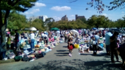 新田6号公園フリーマーケット