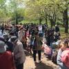 八戸公園春まつりフリーマーケットのイメージ