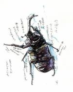 石井秀卓展(絵画・立体)
