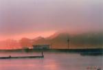 霧の北浦湖畔