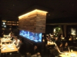 ★ 社会人サークルどりどり ◆ 2015年1月 九州 ◆ お勧めイベント情報!!\(^o^)/ ★