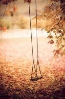 【占い】 秋、冬への恋の準備は万端ですか?