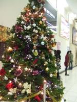 【クリスマスツリー】東京テレポート駅
