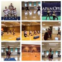 チアリーディング・チアダンス/ICSC FAIRIES Athleticsのイメージ