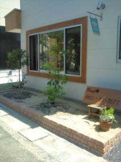 庭木 画像を拡大表示する こんにちは フリンジです 先週の土曜日は遠足のお休... 「庭木」|H