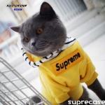 シュプリーム 犬服 超可愛い supreme 猫服 ブラント ドッグウェア