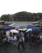 本日6月13日雨の中ではありますが、五六市やってます!