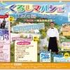 【11/3】第10回マリン村in くろしまマルシェのイメージ