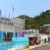 和歌浦漁港朝市(おっとっと広場)のイメージ