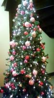 【クリスマスツリー】千葉パルコ!