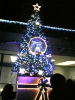 【クリスマスツリー】成田空港