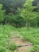 手賀ふれあいの森』はひっそりとしていました。