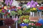 花はるさんのお花は、品質第一、華やかで美しい!