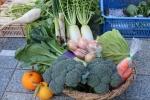 新鮮なお野菜が安くてとっても美味しい(≧▽≦)